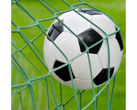 Fotbollnät 7.32m x 2.44m, Grön