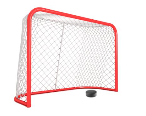Hockeynät för bur, SHL