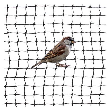 Fågelskyddsnät 20mm svart nylon 1mm knutlöst